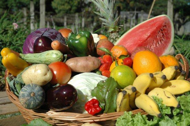 Proposta de participação de agricultores de SC no Programa de Aquisição de Alimentos foi aprovada